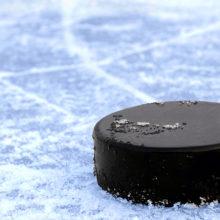 Гомельские хоккеисты вновь обыграли столичную «Юность»