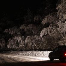 Под Гомелем сотрудники ГАИ пришли на помощь заглохшему ночью автомобилю
