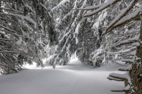 Погода в Беларуси на выходные: ожидается снег и небольшой мороз