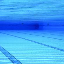 Президент выделил 1 млн рублей на строительство бассейнов в Ветке