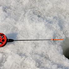 В Гомеле под лёд провалился рыбак