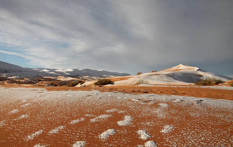 В пустыне Сахара выпал снег