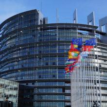 Депутат Европарламента: нужно инвестировать в Россию, нельзя терять времени