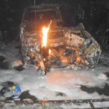 В Гомеле при пожаре в гараже сгорели два автомобиля (видео)