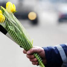 В Гомеле ГАИ проведет акцию «Все внимание женщинам на дорогах!»