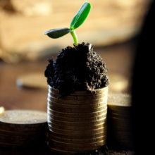 Белстат зафиксировал рост реальных доходов белорусов