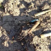 Во время субботника под Речицей нашли боеприпасы времен ВОВ