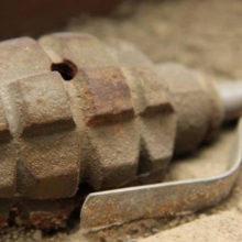 Возле детского сада в Жлобине была найдена граната времен ВОВ