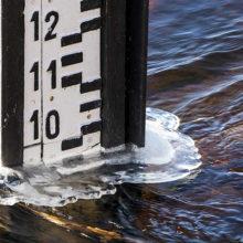 За последние сутки уровень воды в Соже вырос на 12 сантиметров