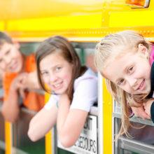 До какого месяца действителен бесплатный проезд для школьников?