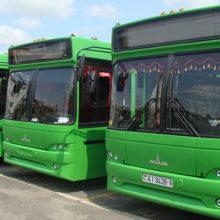 С лета в Гомеле введут новый автобусный маршрут