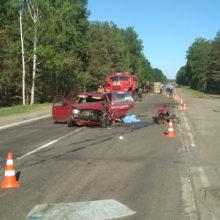 Смертельное ДТП в Петриковском районе: погибла женщина