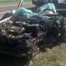 Страшное ДТП под Гомелем: машина «вдребезги», водитель жив