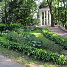 В Гомеле начала работу выставка «Парковая археология»