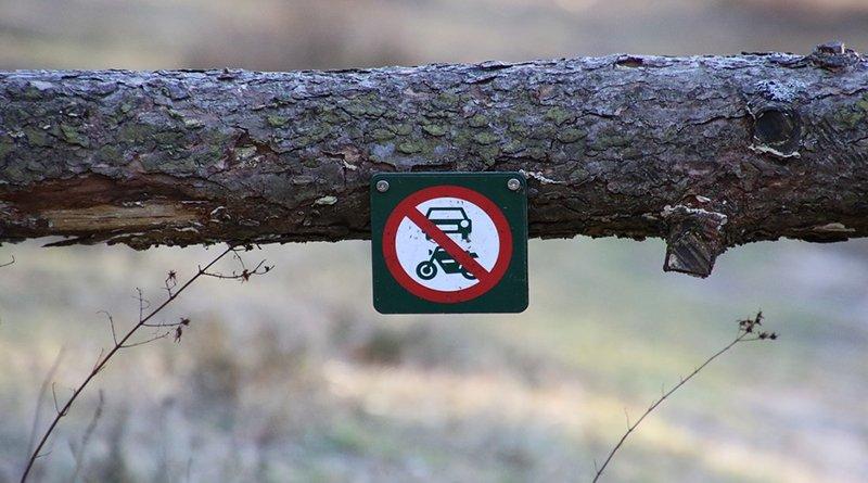 запрет на посещение лесов