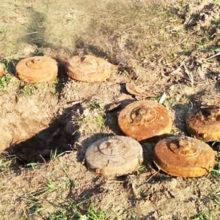 Вблизи трассы Калинковичи — Хойники нашли немецкие противотанковые мины