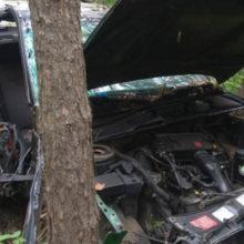 ДТП под Гомелем: пьяный водитель врезался в дерево