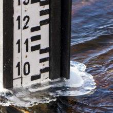 На Гомельщине мелеют реки — уходит до 9 см воды в сутки