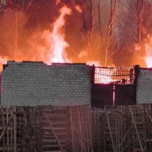Видеофакт: в Светлогорске горел дровяной склад