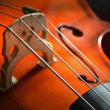 В Гомеле пройдет концерт виолончельной музыки