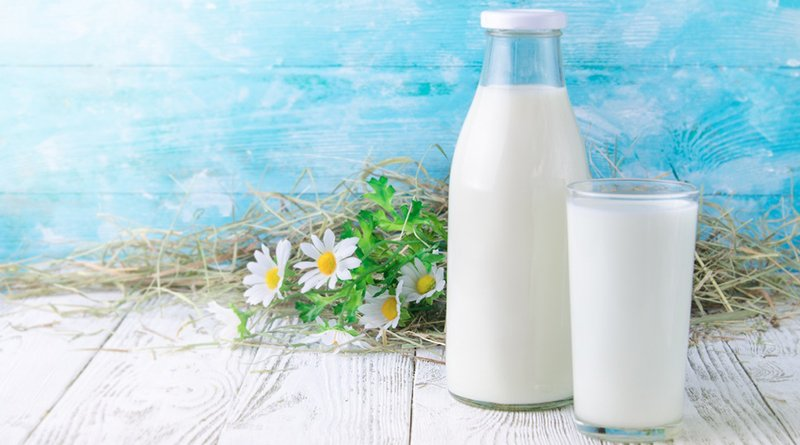 дорожная карта по поставкам молока