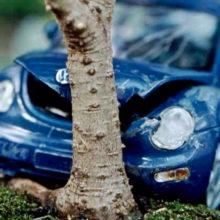 ДТП в Гомеле: молодой водитель влетел в дерево