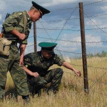 Увеличилось количество задержаний украинских нелегалов