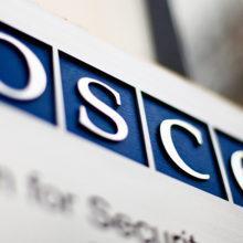 Беланов: в ОБСЕ не хотят слышать, что Крым живет в мире