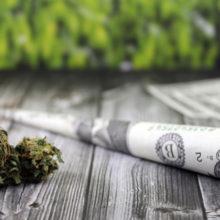 Правительство Грузии решило легализовать марихуану