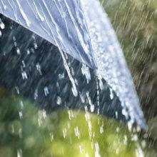 29 октября в Беларуси объявлено штормовое предупреждение