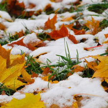 На этой неделе в Беларуси прогнозируется мокрый снег