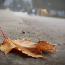 Осенняя хандра и депрессия: есть ли между ними разница