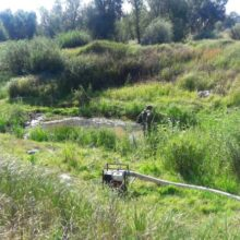 В Гомельской области найден боевой танк