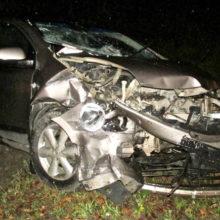 ДТП в Рогачевском районе: Nissan выехал на встречку — 4 пострадавших