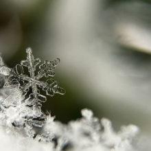 Какой будет погода в Гомеле в выходные дни 8-9 декабря