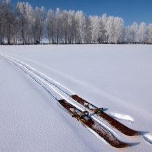 Рассказываем, где в Гомеле можно покататься на коньках и лыжах
