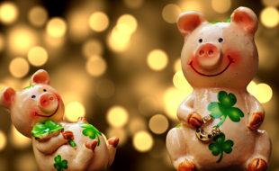 Рассказываем, как правильно встретить год Свиньи?