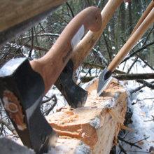 В Добрушском районе погиб вальщик леса