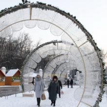 В Гомеле задержан хулиган, крушивший новогоднюю иллюминацию