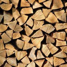 В Беларуси населению станет проще заготавливать дрова
