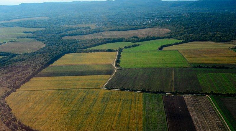 гектар земли в России