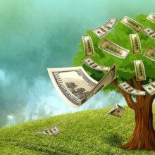 Белорусские банки прекращают выдавать кредиты