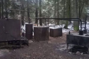 В Беловежской пуще нашли нелегальный самогонный завод