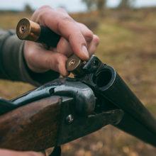 Гомельчанина лишили права на охоту за стрельбу в деревне