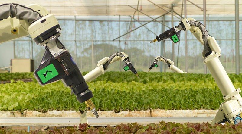 Сельскохозяйственных роботов