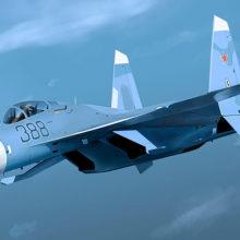 Су-27 прогнал истребитель НАТО от самолёта правительства России