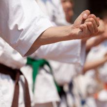 В Гомеле пройдут международные сборы по карате с участием инструкторов из Японии