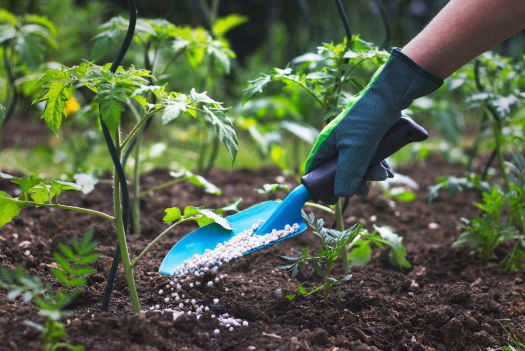 хороший урожай