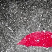 Ветер, метель, но до +7°С: прогноз погоды в Беларуси до конца недели