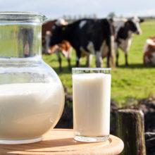 Минсельхозпрод будет доплачивать населению при скупке молока и мяса